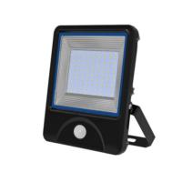 AC85-265V 100W PIR Flood Lights LED for Outdoor Landscape Lighting