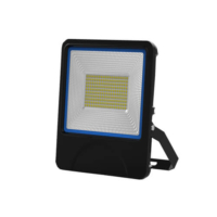 Factory Direct Sale 100W SMD LED Floodlight Playground Lighting