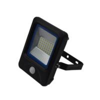 Factory Direct Sale 110V 220V 230V IP66 Mini PIR Led Flood Light 30W