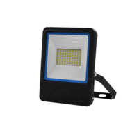 Hotsell SMD Lamp 50W Led Floodlight IP66