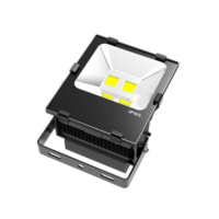 Outdoor Lamp IP67 Waterproof 70W Floodlight LED