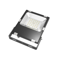 Portable Flood Light - AC 85-305V New IP67 30W Led Floodlight